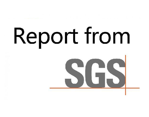 On-site inspection report issued by SGS